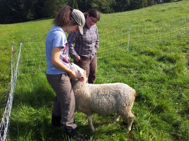 Petting Agnes