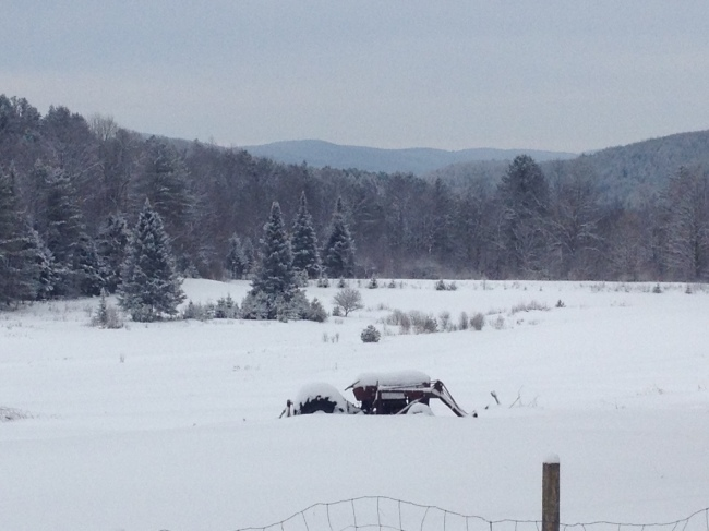 Sheep and Pickle Farm Vermont Fine Wool Sheep Winter Scene