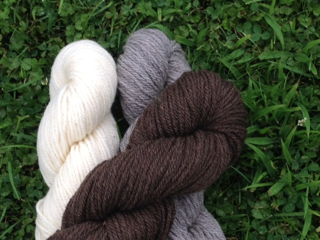 Sheep and Pickle Vermont Aran Natural Colored Wool Yarn