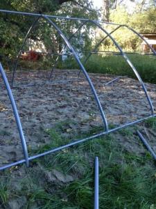 Sheep and Pickle Farm Barn Construction